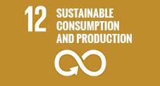 12 - Sustainable consumption and production