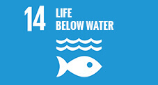 14 - Life below water