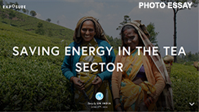 Photo Essay: Saving Energy in the Tea Sector