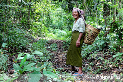 Securing rights to forest produce enhances and sustain livelihood and economic security.
