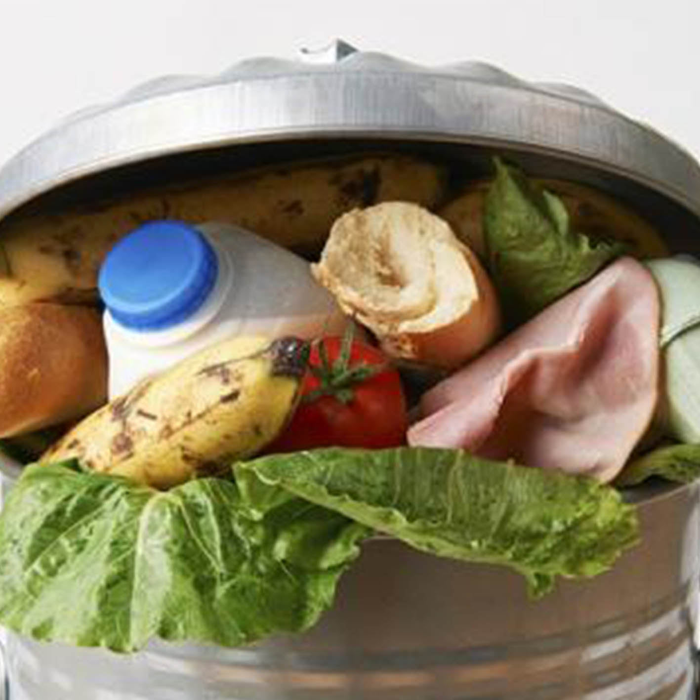 Reducing food waste vital for India's food security