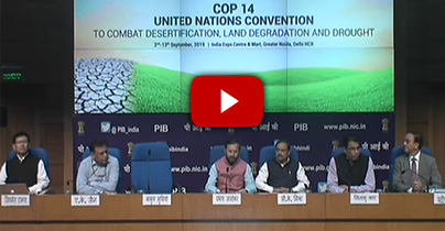 IPC Report_Video
