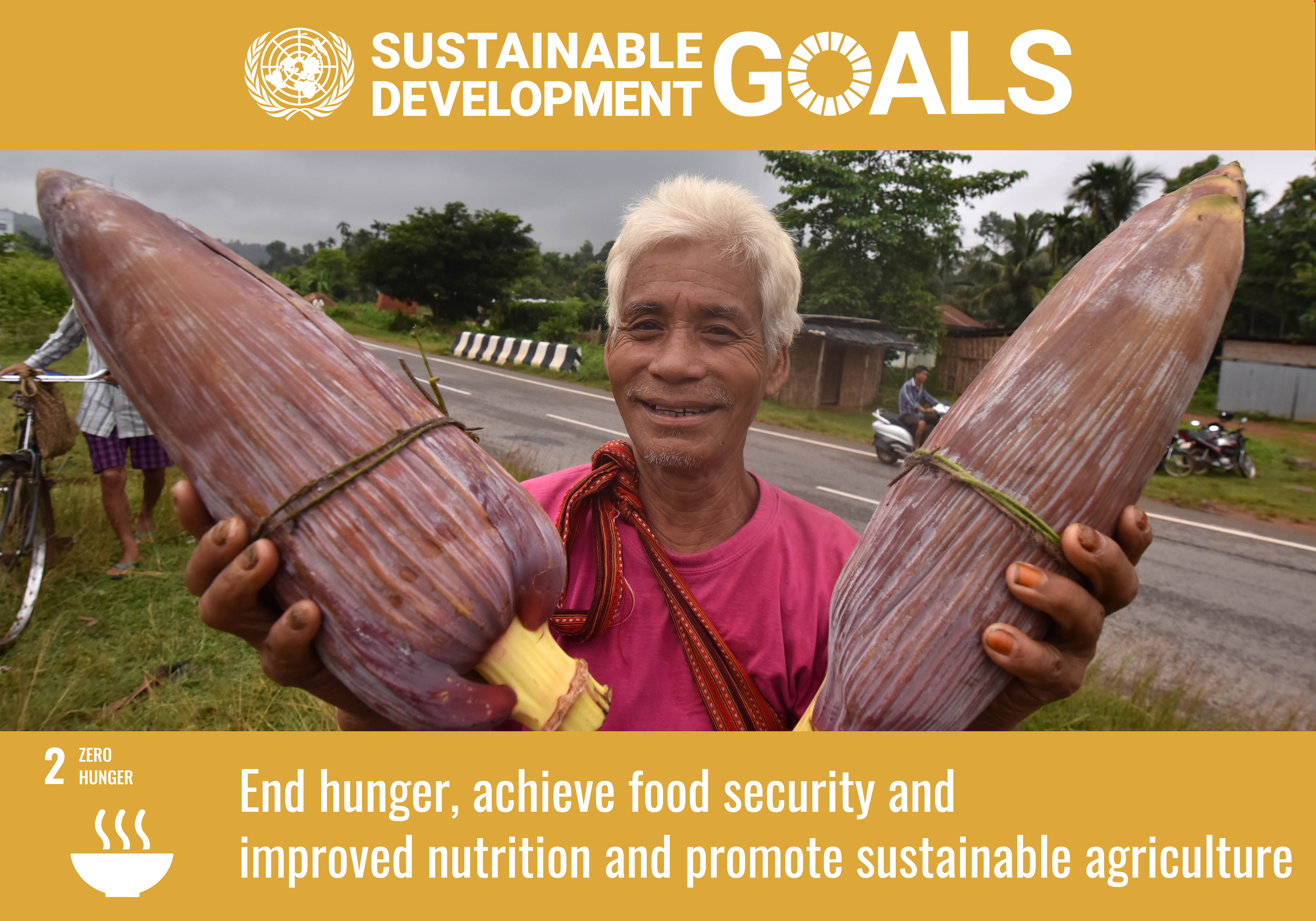 SDG 2, achieve food security, sustainable agriculture, Zero Hunger Programme, UN India